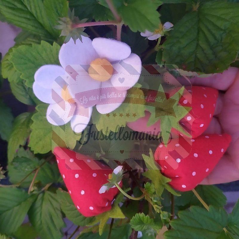 Fustella L Fragola fiore e foglia
